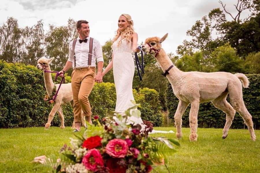 Wedding Experiences